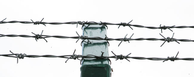 Barbed Wire - NK Fencing Ireland | NK Fencing Ireland - The leading ...